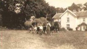 Gwarmacwydd Haymaking in the 1930's
